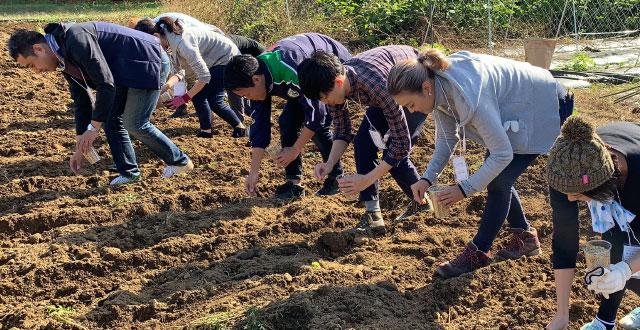 農ticeプロジェクト