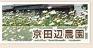 マイファーム京田辺農園