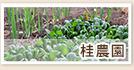 マイファーム桂農園