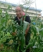 http://myfarmer.jp/wp-content/uploads/2014/07/farm_34_kanri01.png