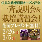cropnet_banner