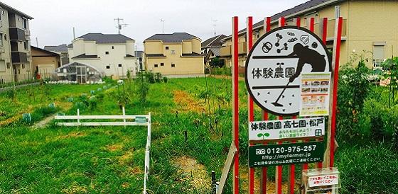 松戸高七園農園