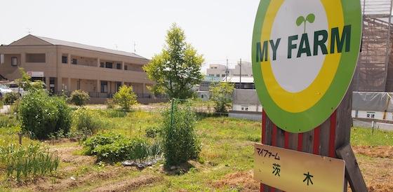茨木農園[2022年6月末閉園]