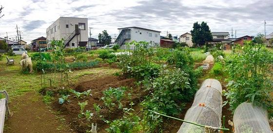 八千代農園