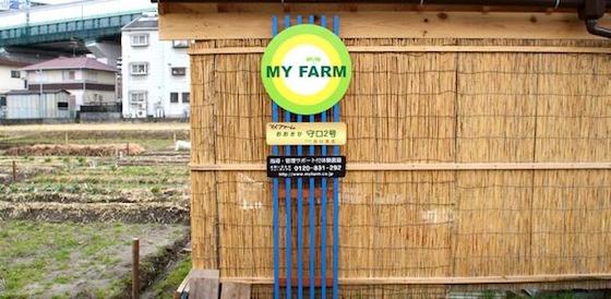 守口2号農園
