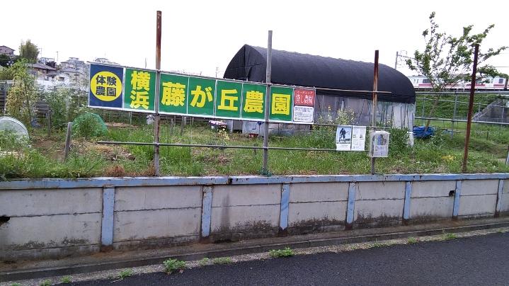 横浜藤が丘農園