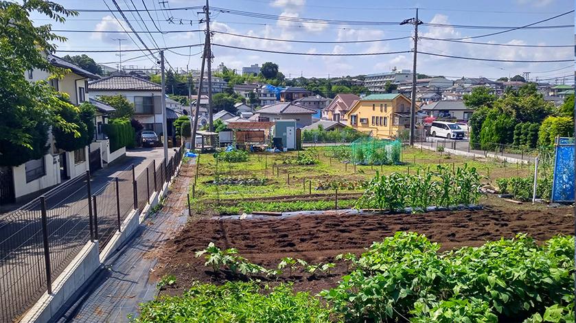 横浜南本宿農園